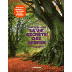 La vie secrete des arbres de Peter Wohlleben ed Les Arènes version illustrée