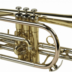 Cornet SML Paris CO50 verni