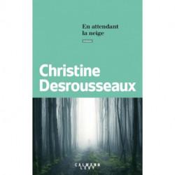 En attendant la neige de Cristine DESROUSSEAUX, éditions Calmann Levyh